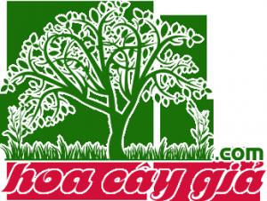 logo hoacaygia