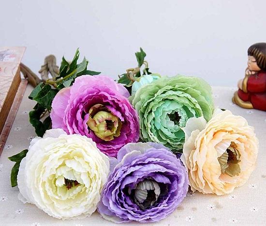 hoa mao luong gia