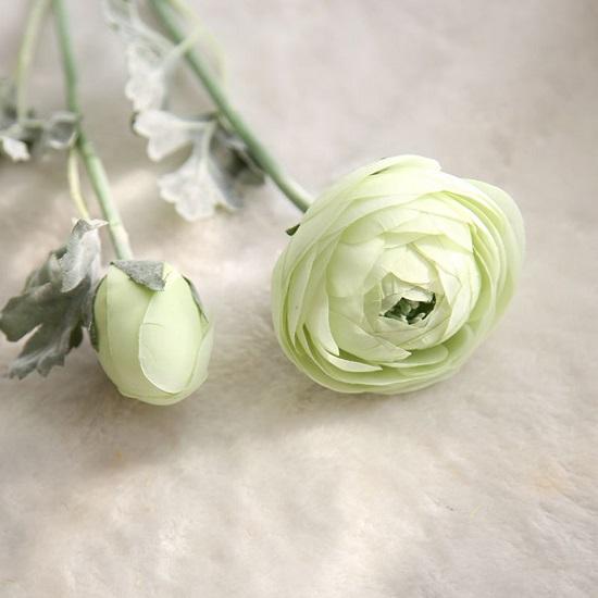 hoa tra gia